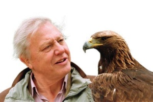 FEB 4 David Attenborough