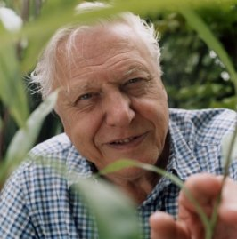 sir_david_attenborough